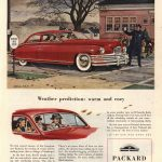 Packard 1948 - Brindle